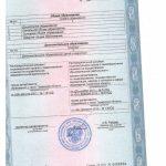 Приложение №1 к лицензии на осуществление образовательной деятельности(1)