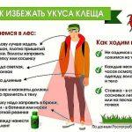 kleshhi_pamyatka
